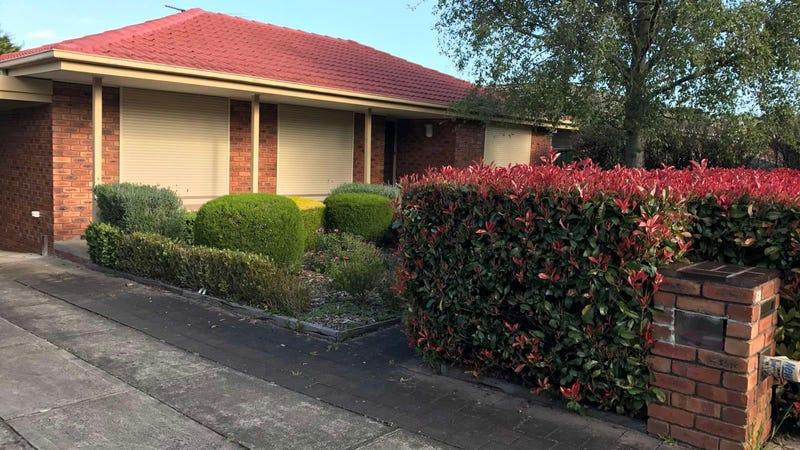 12 Andene Drive, Narre Warren, Vic 3805