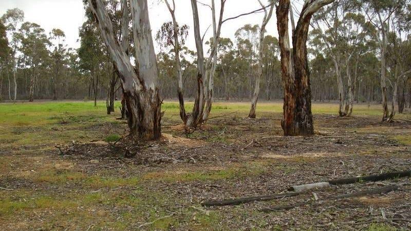 127 Wattle Track, Adelaide Lead, Vic 3465