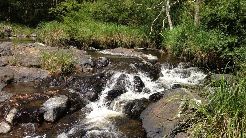 Tuntable creek