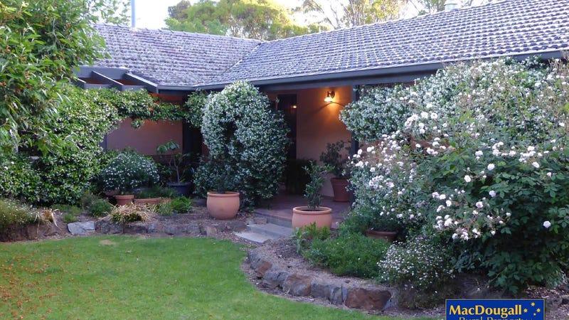 398 Cluny Road, Armidale, NSW 2350