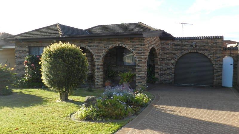 45 Alinga Street, Cabramatta West, NSW 2166