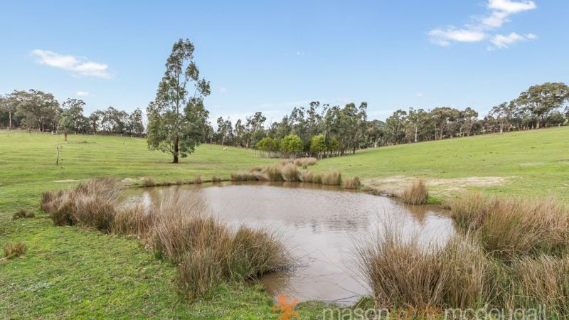 2195 Heidelberg-kinglake Road, St Andrews, Vic 3761