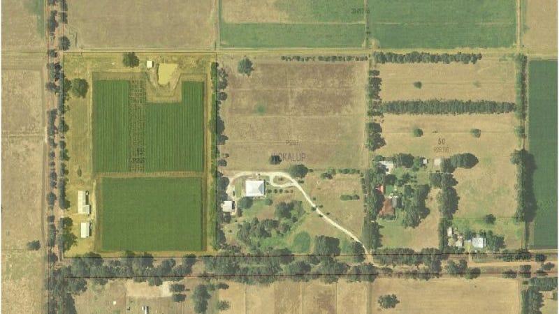 191 Powell Road, Wokalup, WA 6221