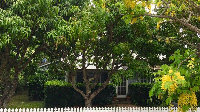 34 Elton Street, Girards Hill, NSW 2480