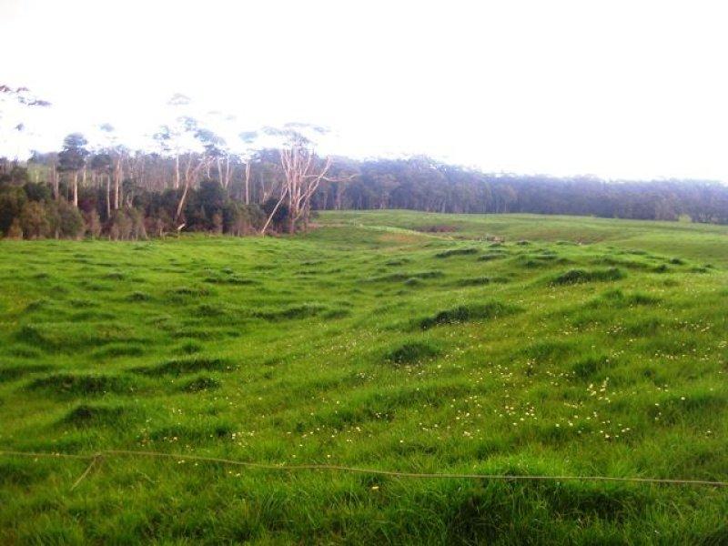 120 Linnanes Road, Marrawah, Tas 7330