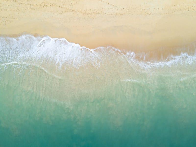 9a Beachfront Close, Sapphire Beach, NSW 2450