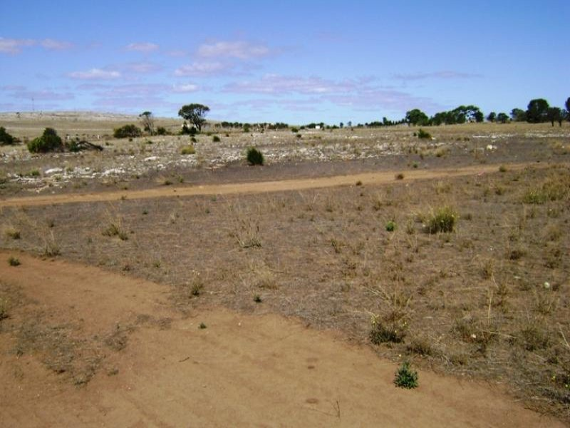 Lot 42/ Second Street, Sheringa, SA 5607