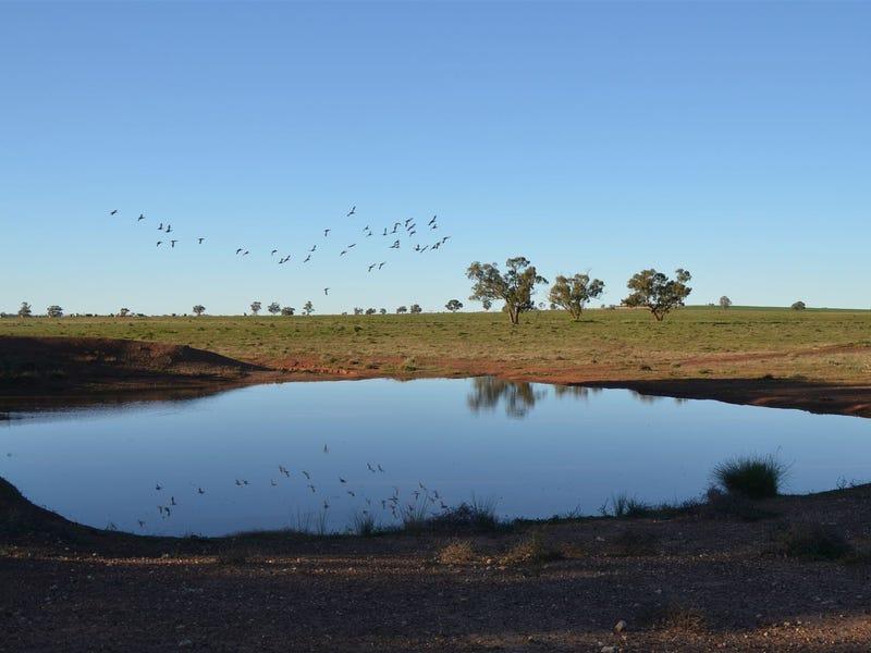 * The Poplars, Lake Cargelligo, NSW 2672