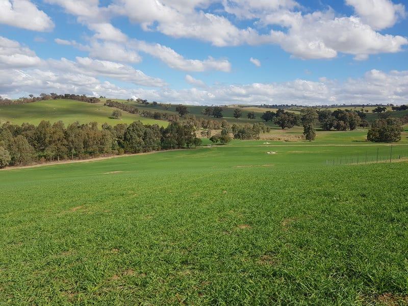 Castlereagh, Wagga Wagga, NSW 2650