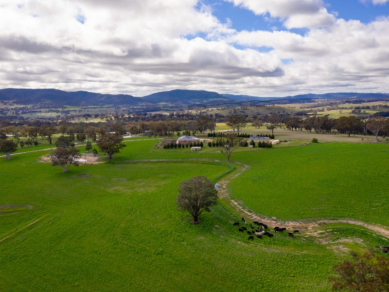 1299 Carlwood Road, O'Connell, NSW 2795