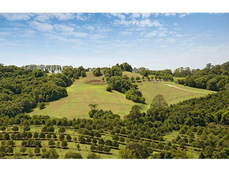 Lot 8 Teak Lane, Federal, NSW 2480