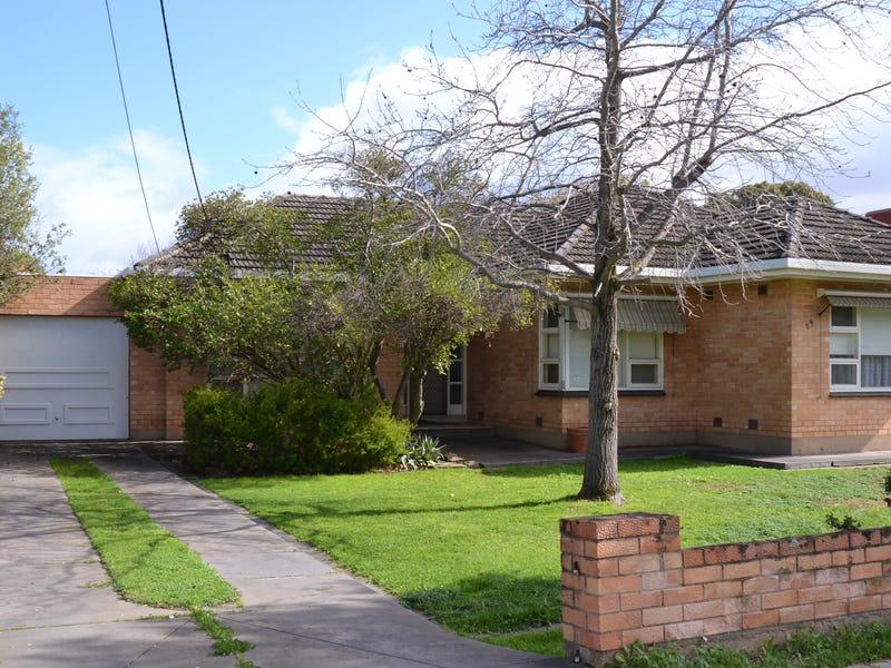 19 Osborn Terrace, Plympton, SA 5038