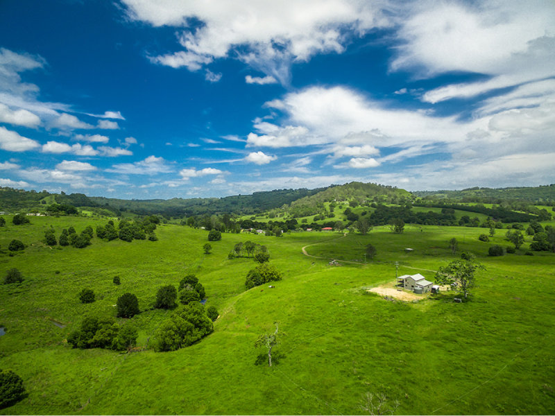 969 Pinchin Road, The Channon, NSW 2480