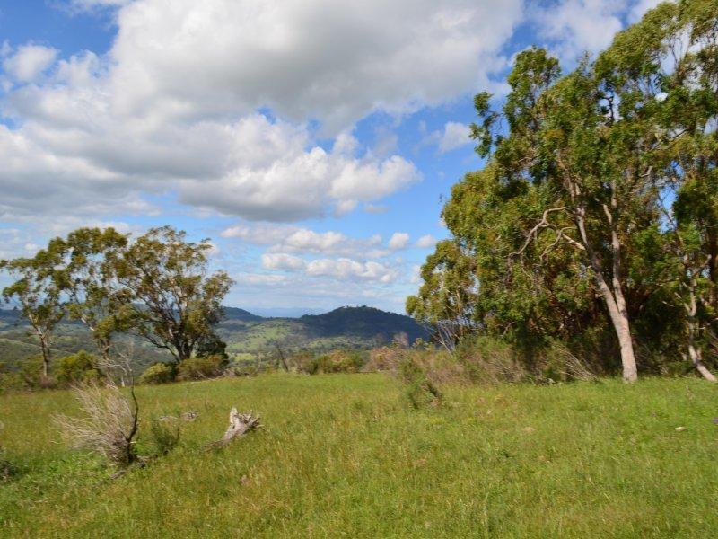 Philips Creek Road, Willow Tree, NSW 2339