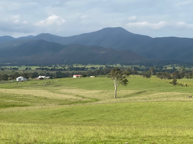 2603 Snowy Mountains Highway, Bemboka, NSW 2550