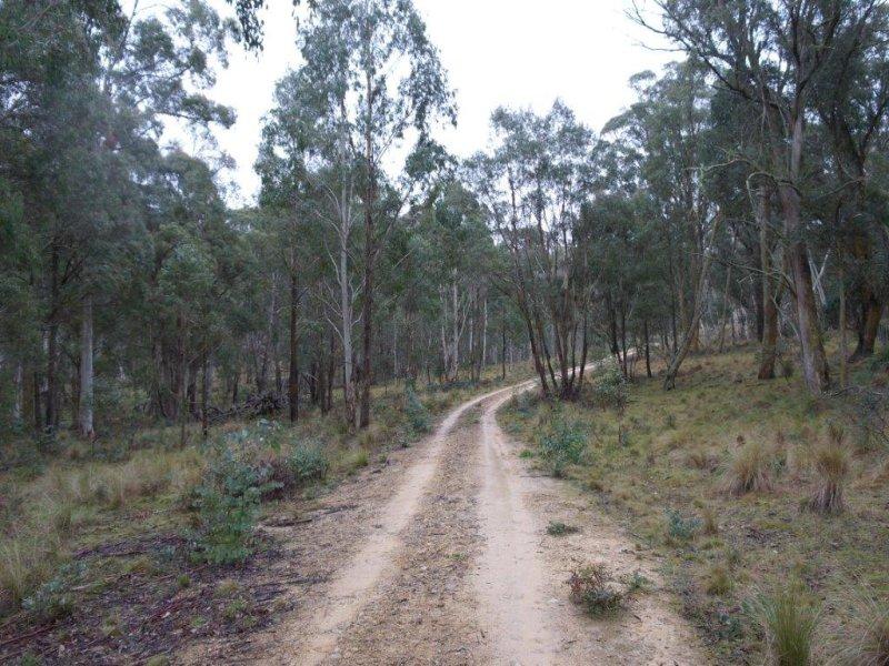 778 Mount Rae Rd, Taralga, NSW 2580
