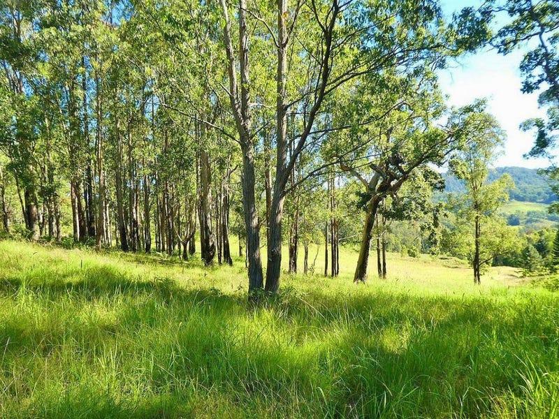 258 Smiths Creek Road, Smiths Creek, NSW 2474