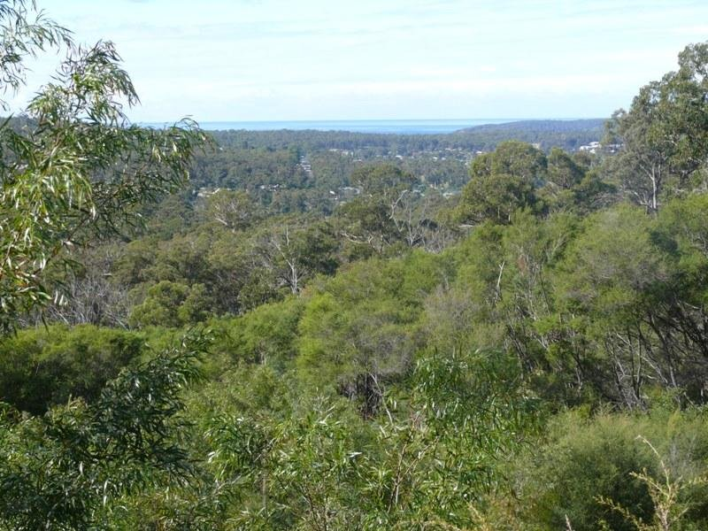 Lot 606 Mac Hill Pl, Bald Hills, NSW 2549