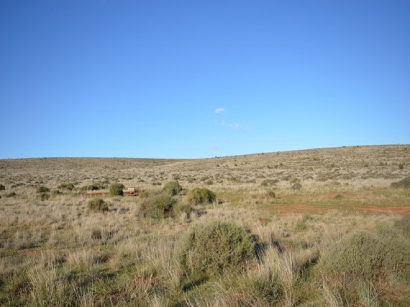 """""""Charlies"""" Sections 80 and 83S, Mount Bryan East, SA 5419"""