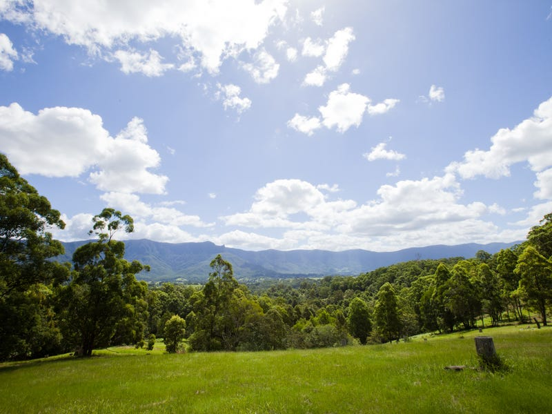 1475 Byrrill Creek Road, Tyalgum, NSW 2484