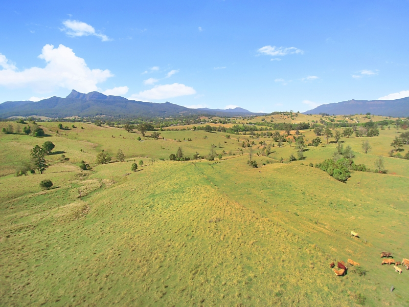 Lot 28 Hoggs Road, Tyalgum, NSW 2484