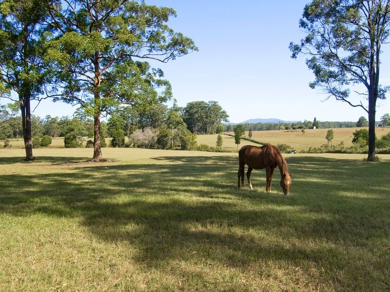 75 Blundell Road, Bobs Creek, NSW 2443