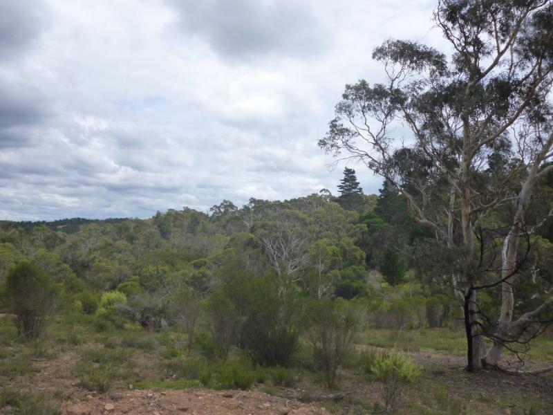 Lot 58 Tall Pines Estate Rd, Nerriga, NSW 2622