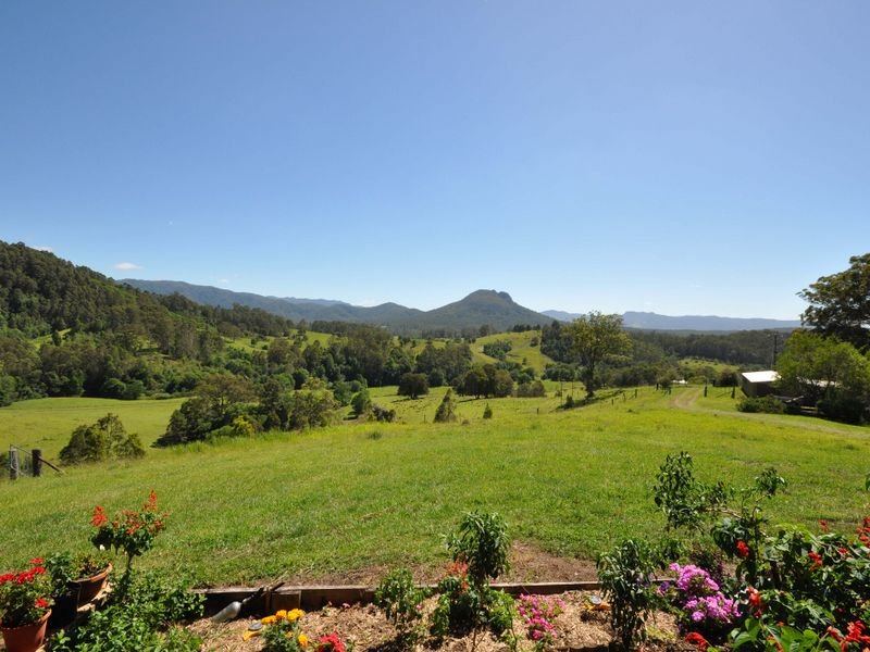 137 Yarnolds Road, Killabakh, NSW 2429
