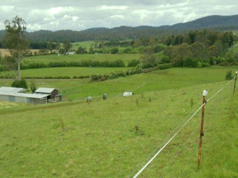 1666 Bridgenorth Road, Rosevale, Tas 7292