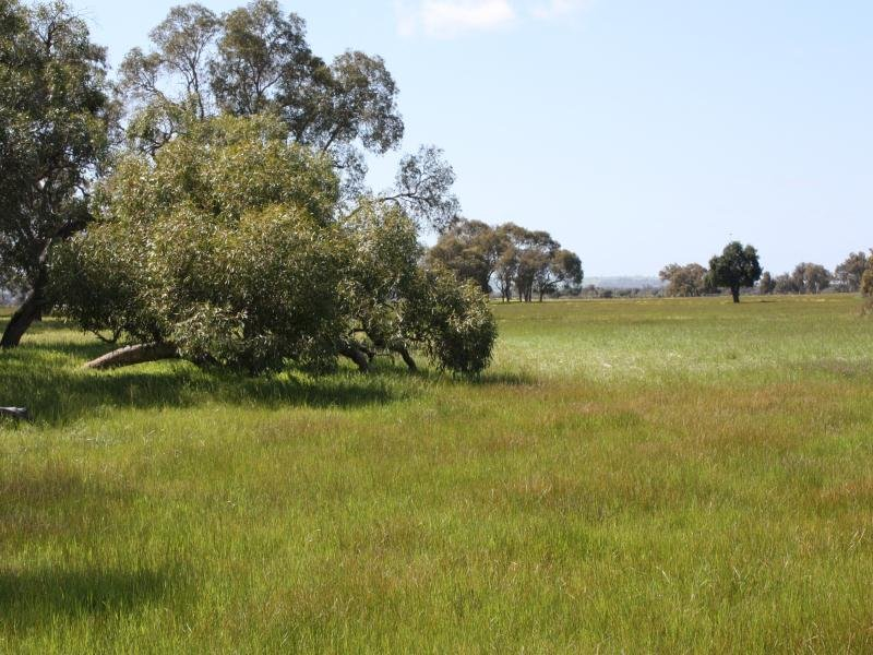 Lot 121 Gingin Brook Road, Muckenburra, WA 6503