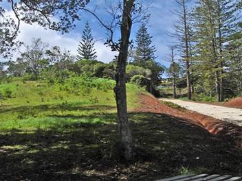2 Acres in Subdivision, Norfolk Island