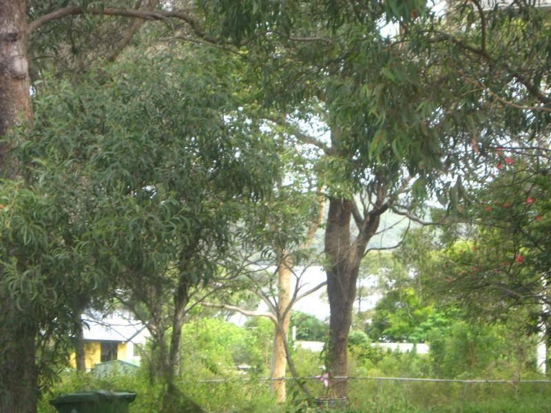 55 Fern Terrace, Russell Island