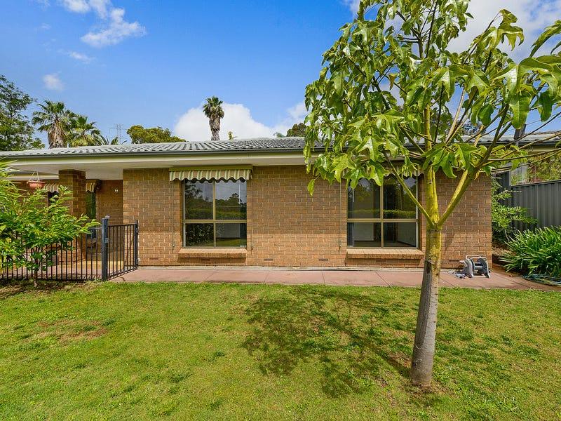 54 Tania Drive, Aberfoyle Park, SA 5159