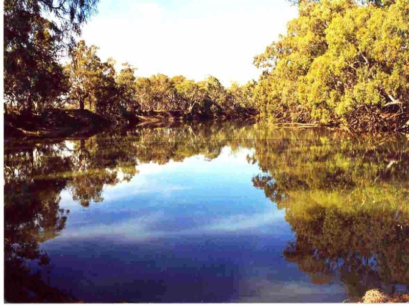 . Riverside, Old Morago Rd, Deniliquin, NSW 2710