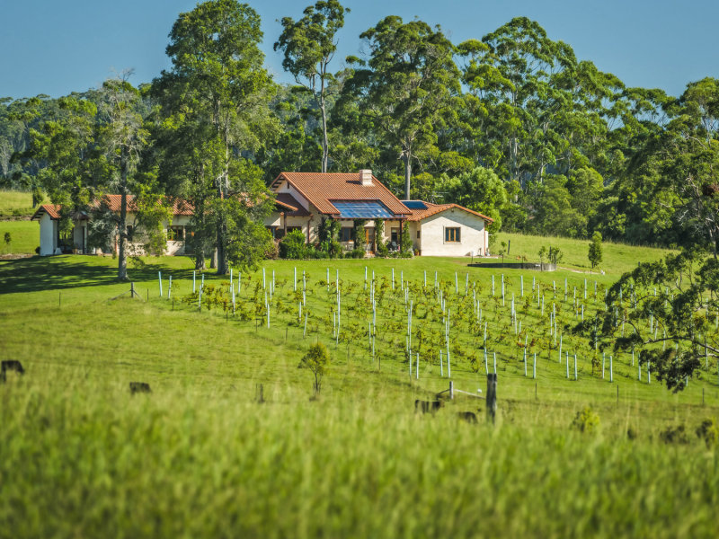 373 Mardells Road, Bucca, NSW 2450