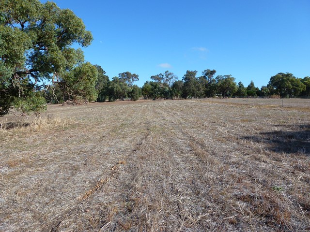 Lot 116 Citron Way, Lower Chittering, WA 6084