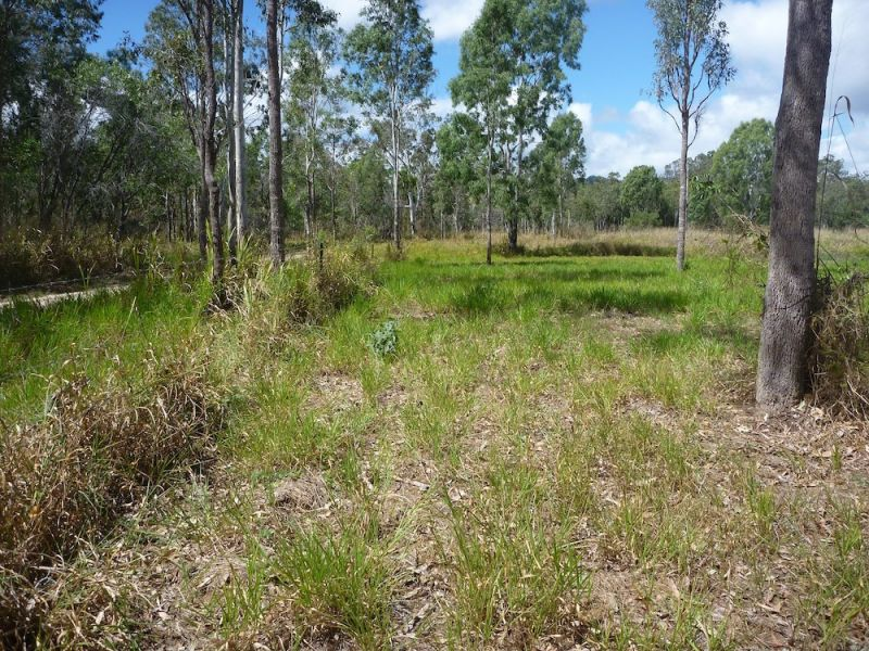 Lot 37 Wetherby Road, Mount Molloy, Qld 4871