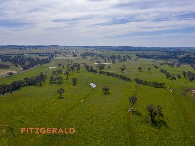 128 Norah Creek Road, Molong, NSW 2866