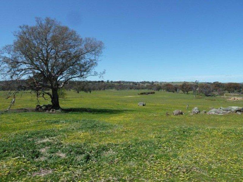 1383 Lachlan Valley Way, Boorowa, NSW 2586