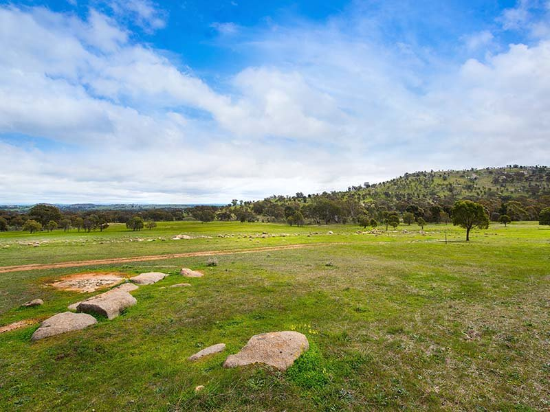 Mount Back Road, Maldon, Vic 3463