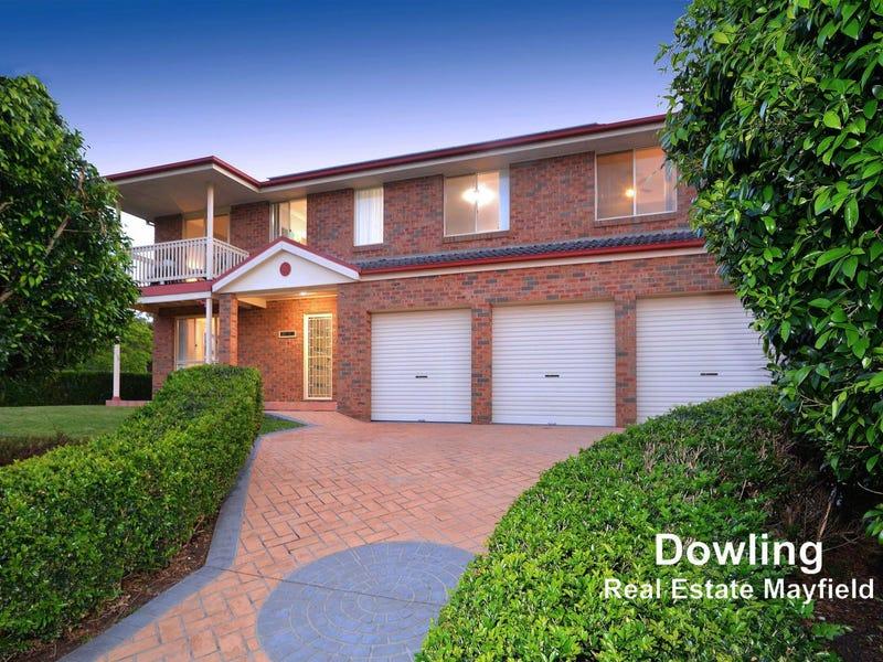 44 Eucalyptus Circuit, Warabrook, NSW 2304