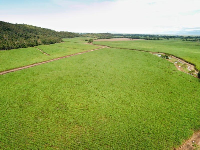 Coastal Farms, Tully, Qld 4854