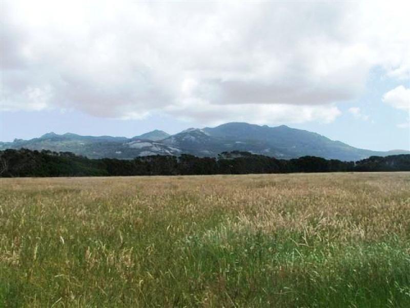 672 Coast Road, Ranga, Lady Barron, Tas 7255