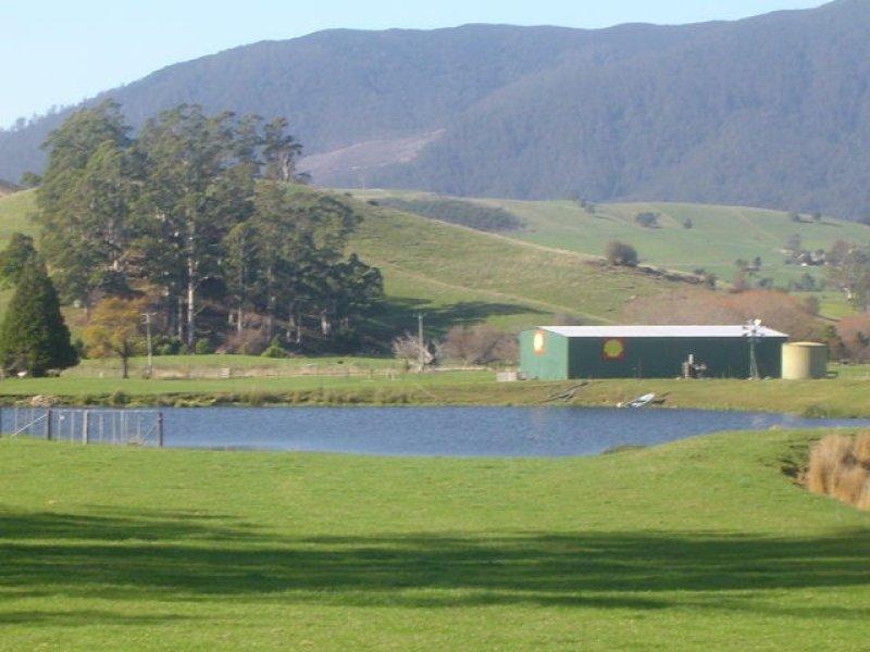35917 Tasman Highway, Springfield, Tas 7260