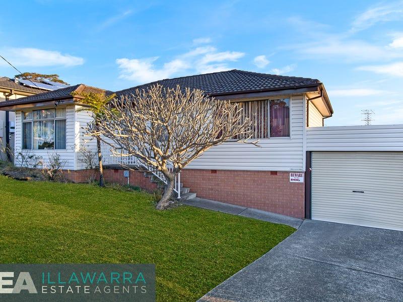 9 Cleary Avenue, Kanahooka, NSW 2530