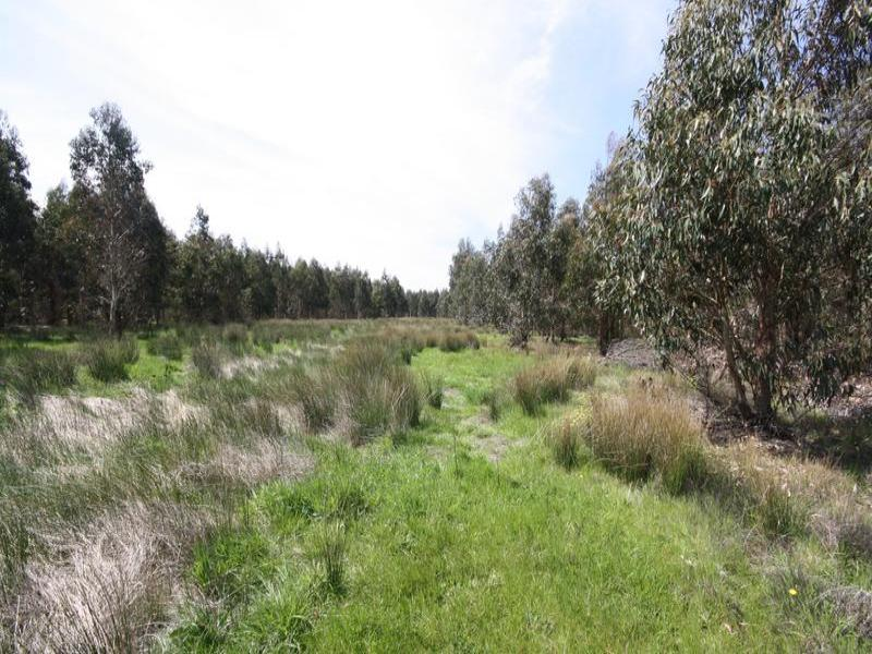 Lot 2 Carngham Lake Goldsmith Road, Mena Park, Vic 3373
