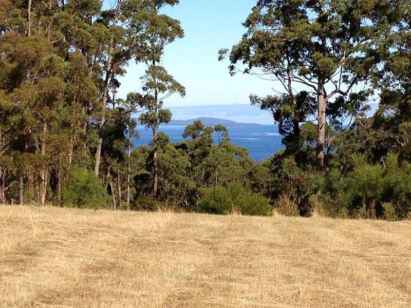 Lot 2, 49 Wills Road, Abels Bay, Tas 7112