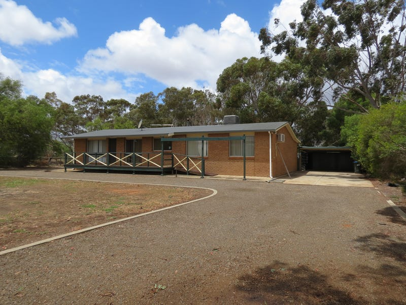 8  Coats Road, Two Wells, SA 5501