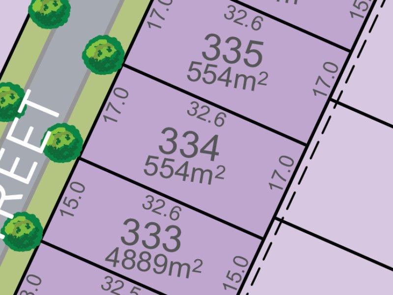 Lot 334, Mountain St, Chisholm, NSW 2322