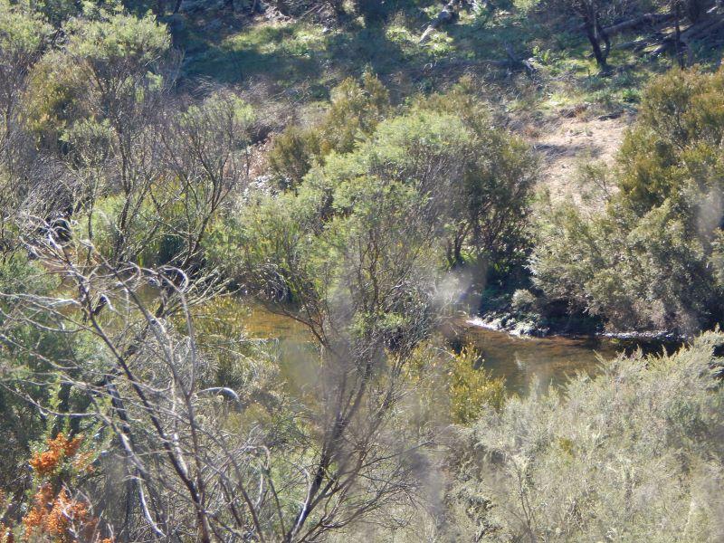 Lot 16 Brassey Creek Trail, Bungarby, NSW 2630